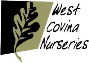 WCN Logo